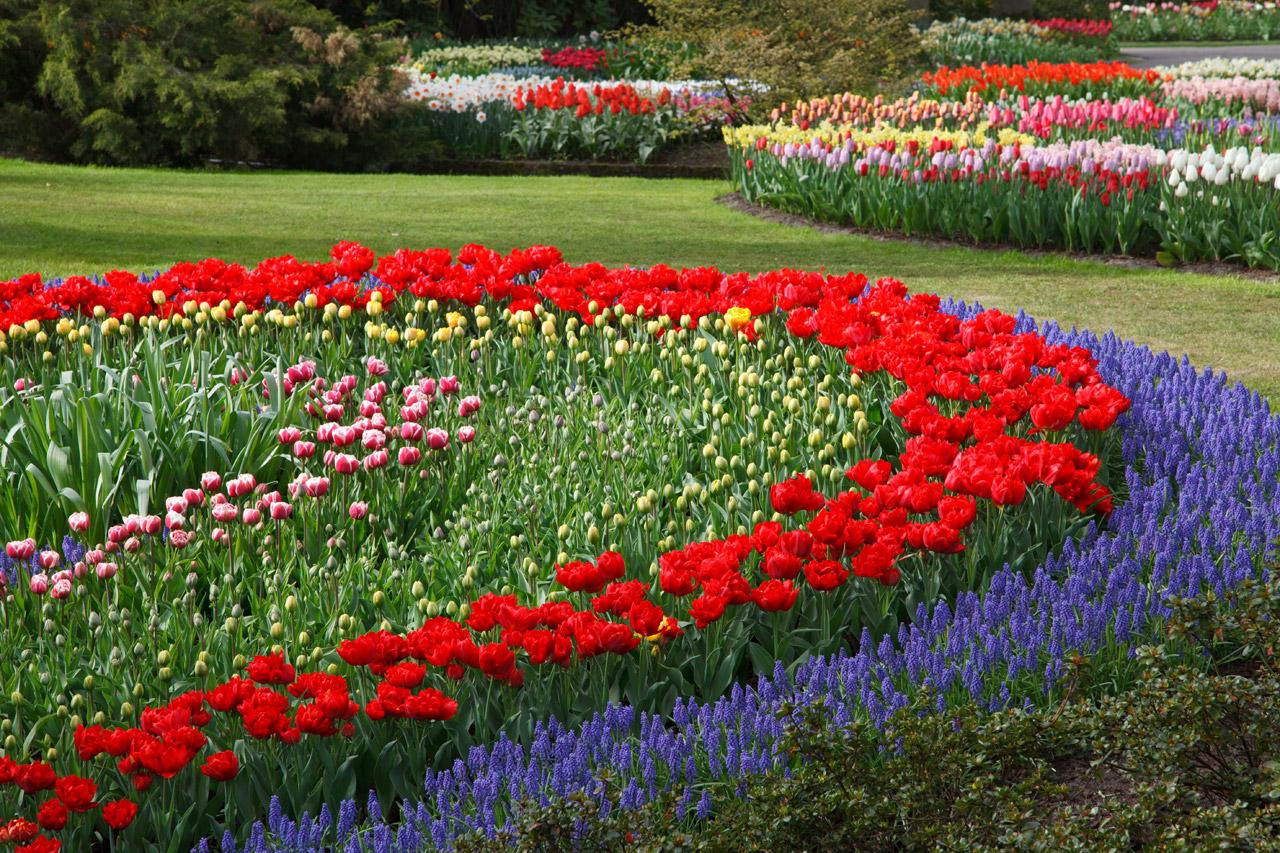 Image result for garden images