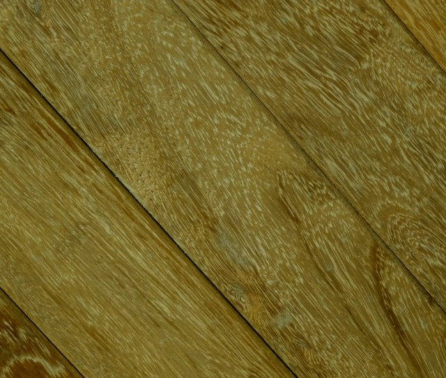 Olive Green Wood Grain Background