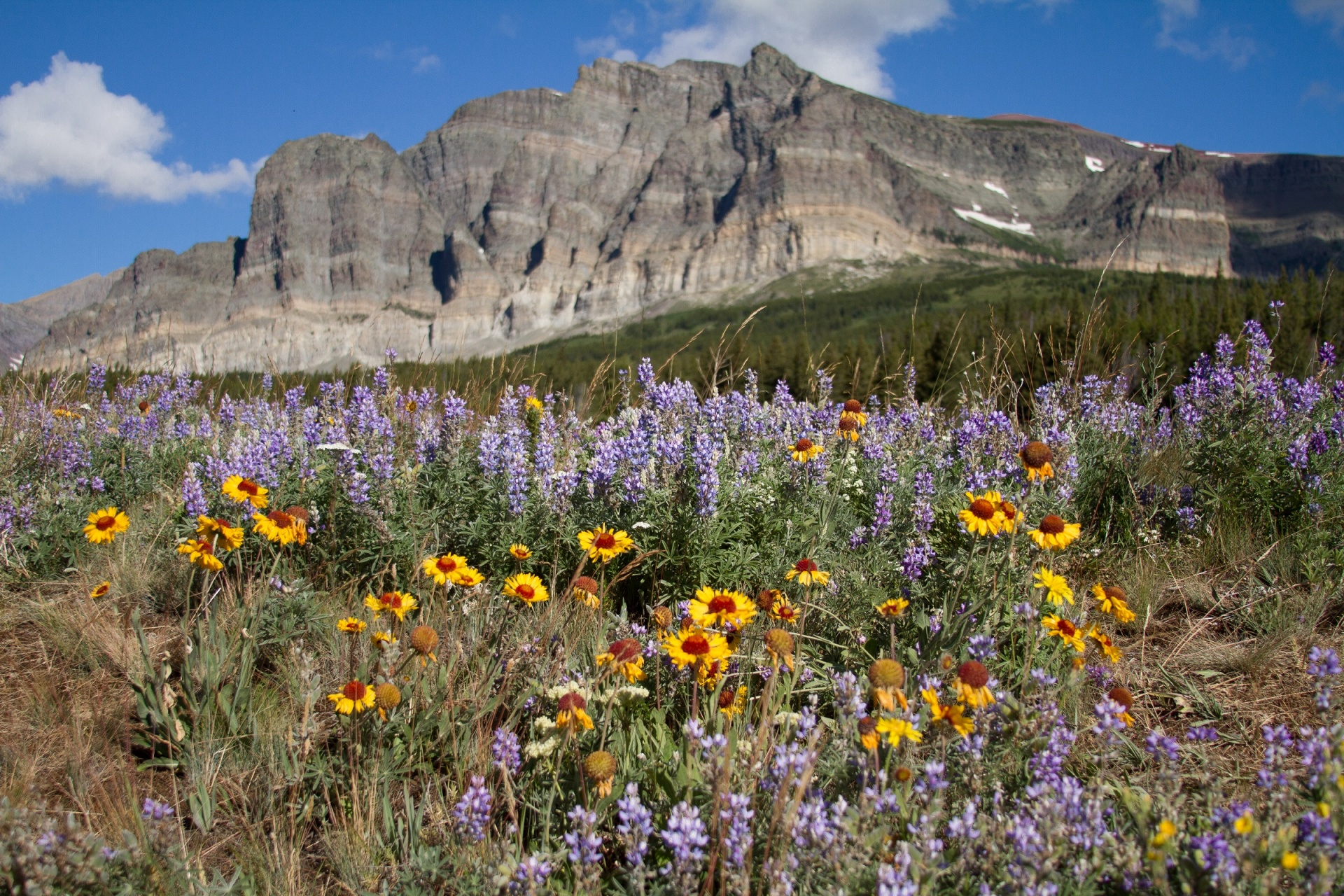 Glacier National Park, Parks and Recreation Month