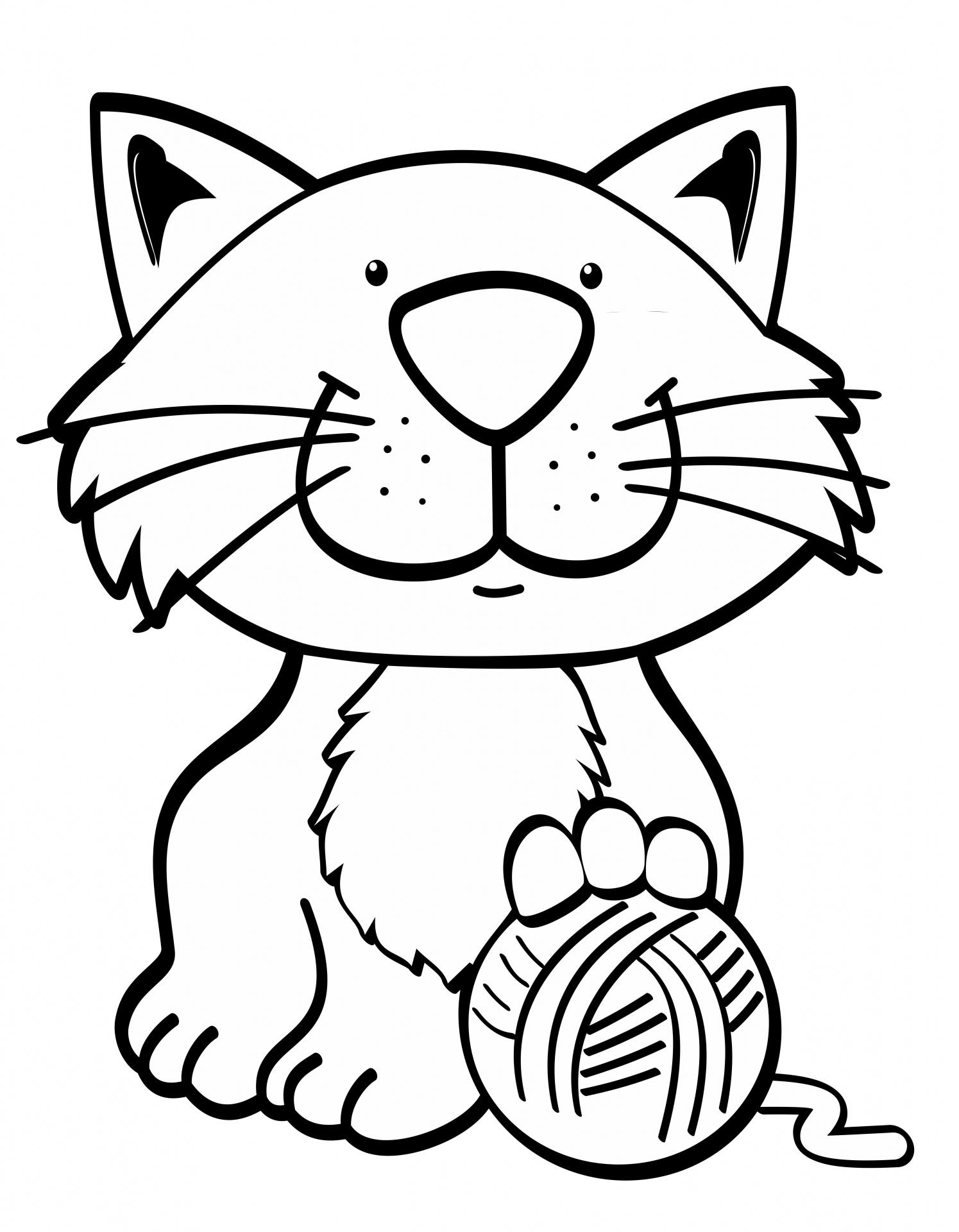 A Mean Cat