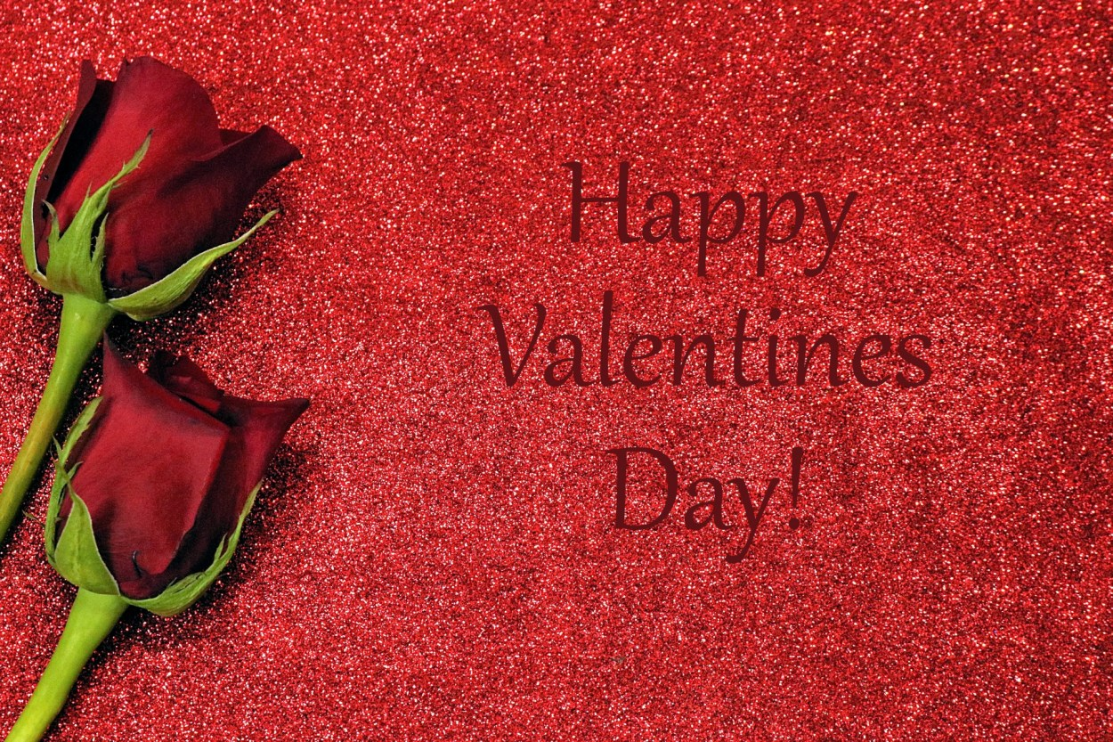 Valentines Day Roses And Glitter Free Stock Photo - Public Domain ...