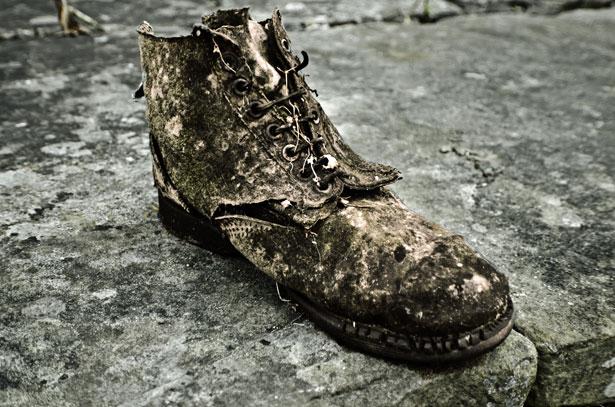 Old Shoe by George Hodan