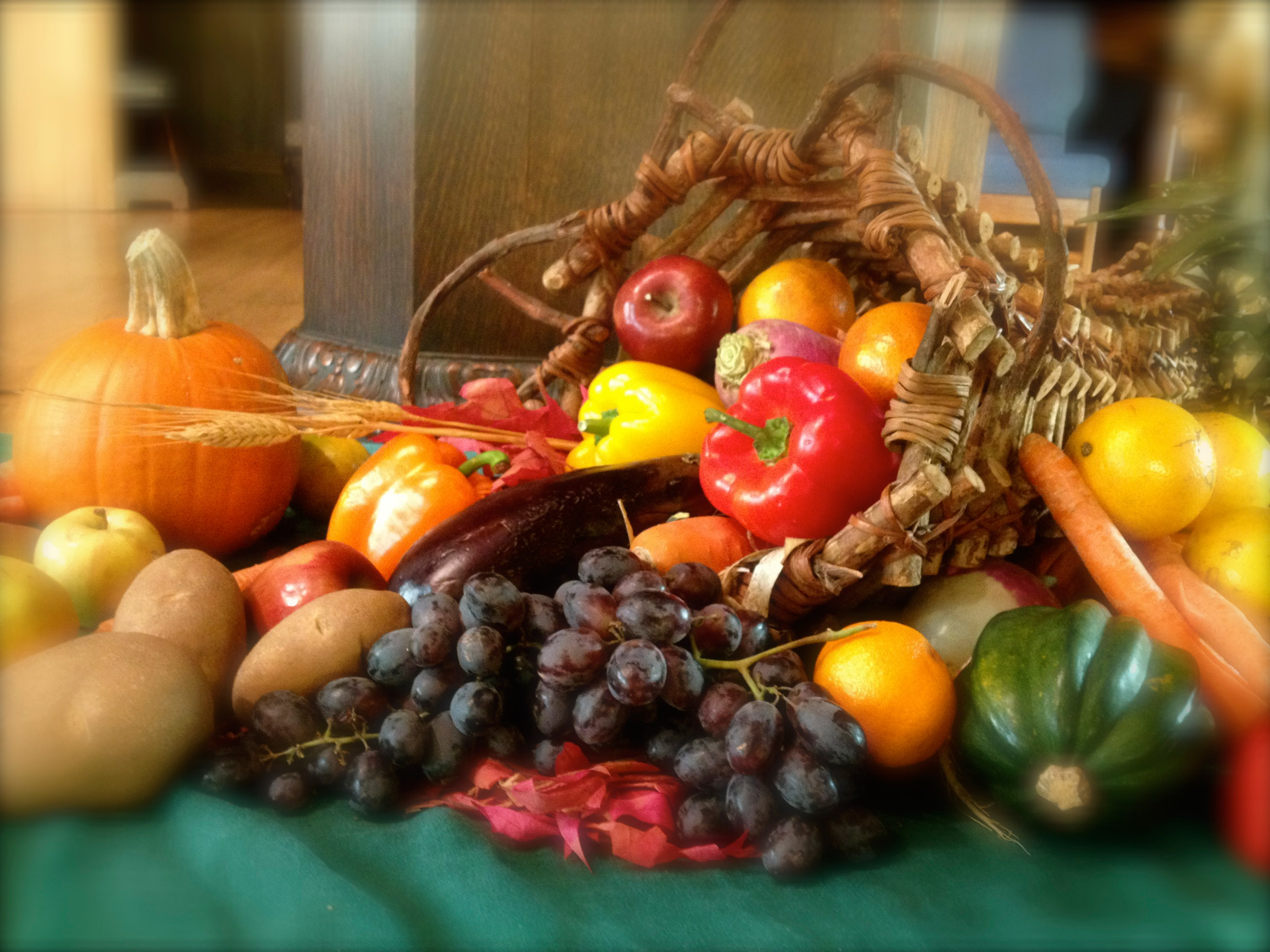 Cornucopia Free Stock Photo Public Domain Pictures