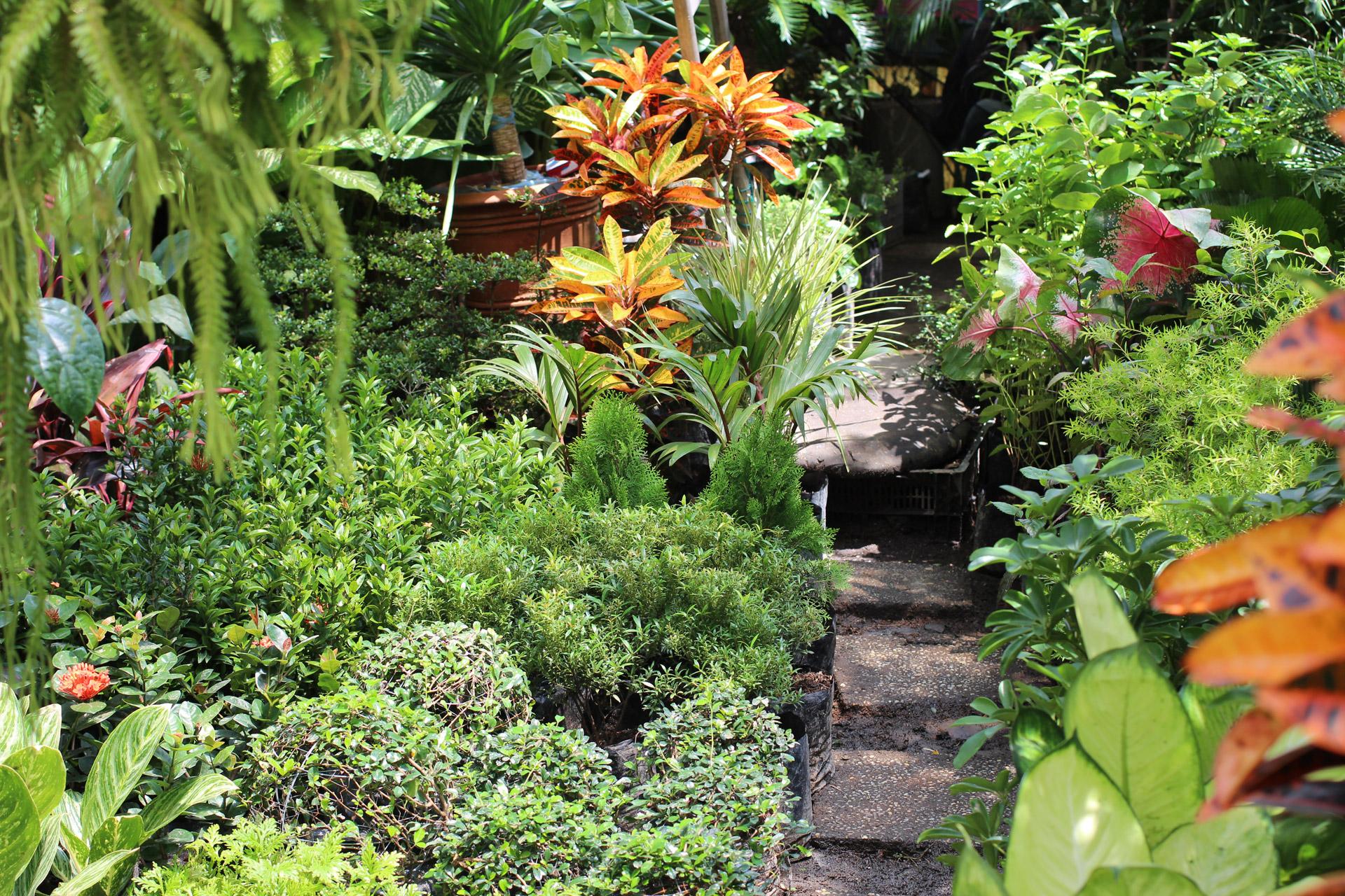 Gardens, National Garden Month