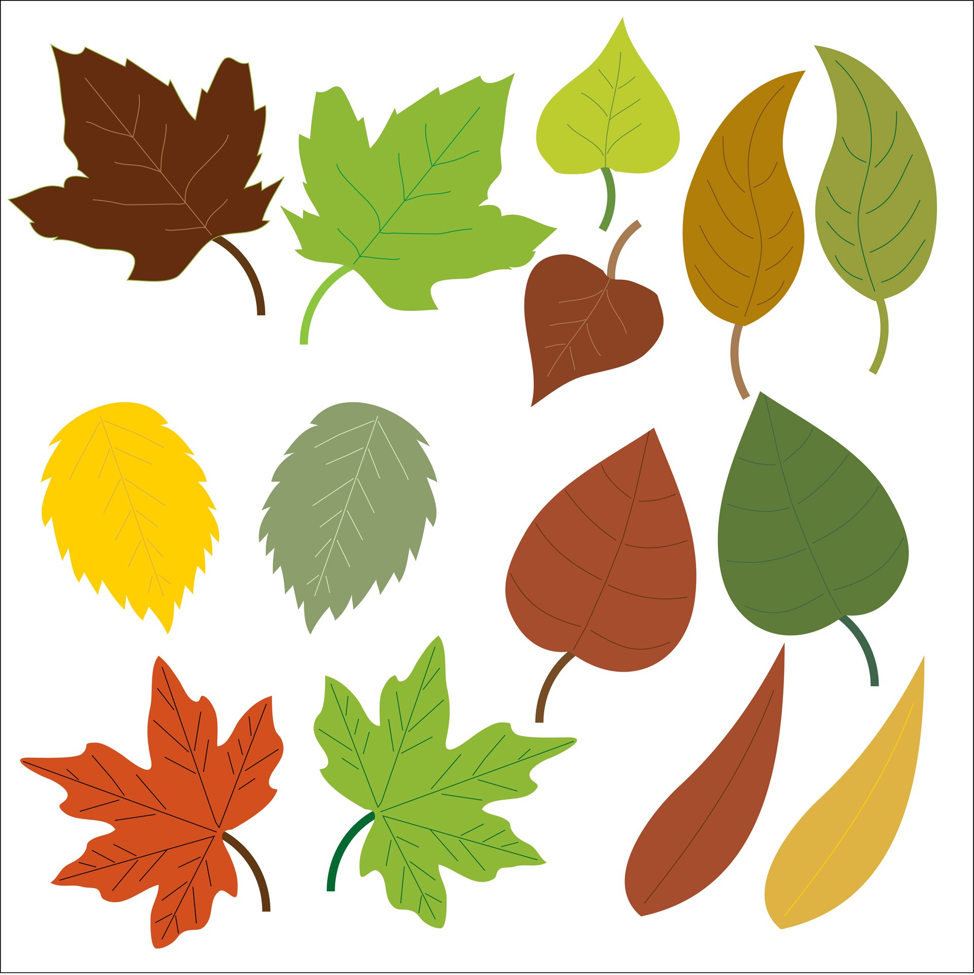 Leaves Clipart Free Stock Photo