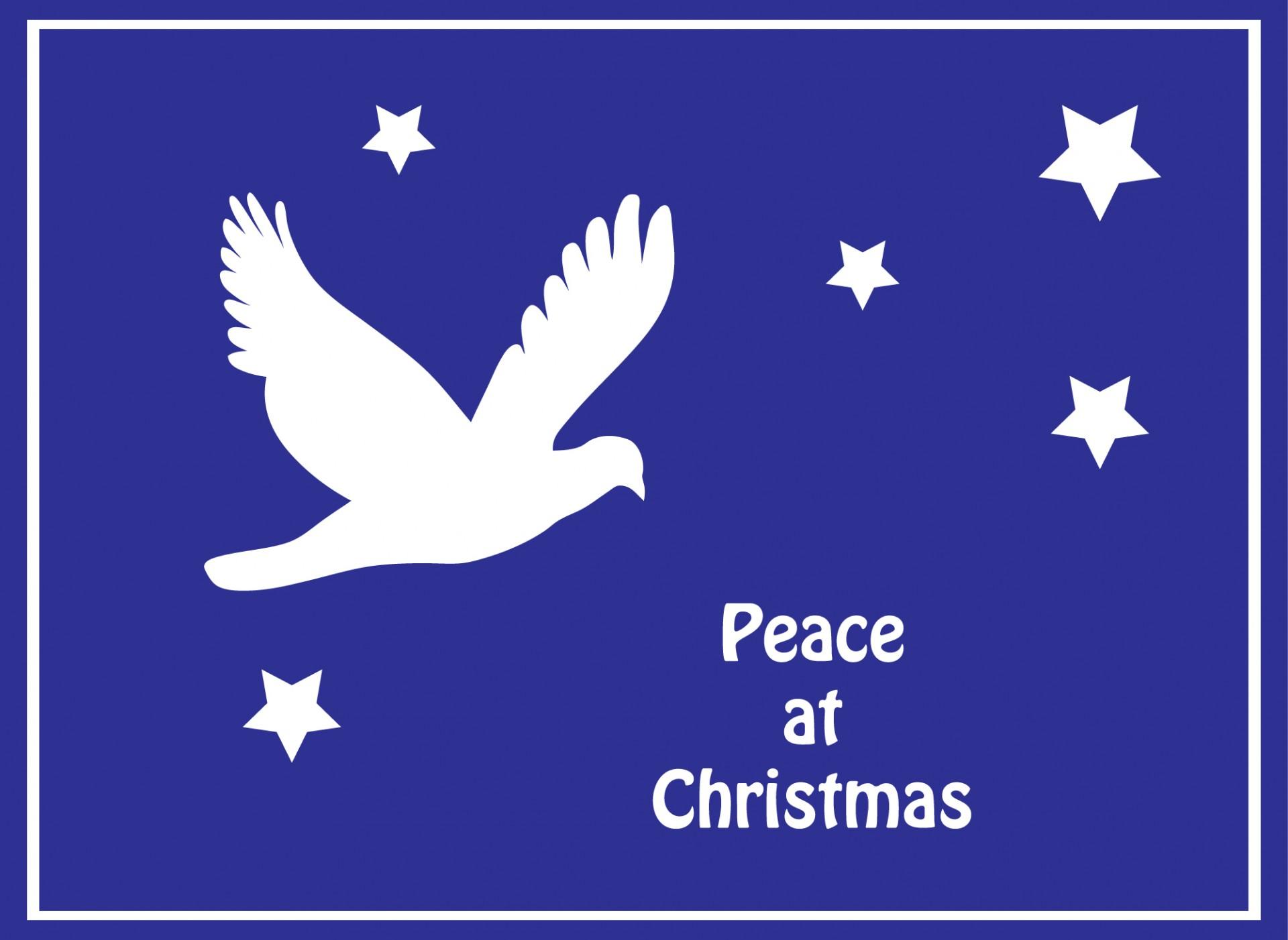 Dove Peace Christmas Card Free Stock Photo Public Domain