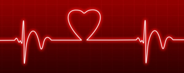 Heartbeat Free Stock Photo Public Domain Pictures