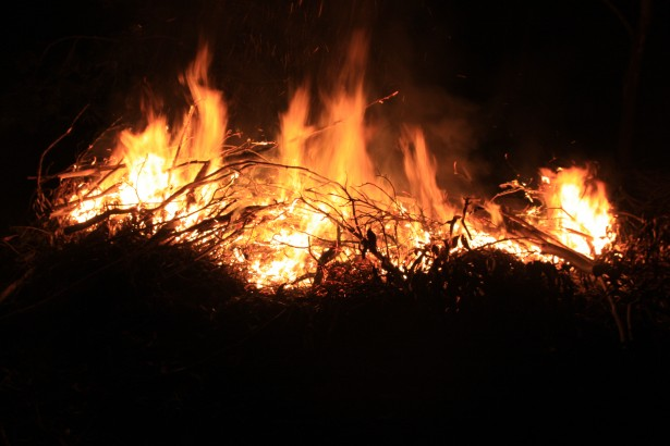McKail Bonfire