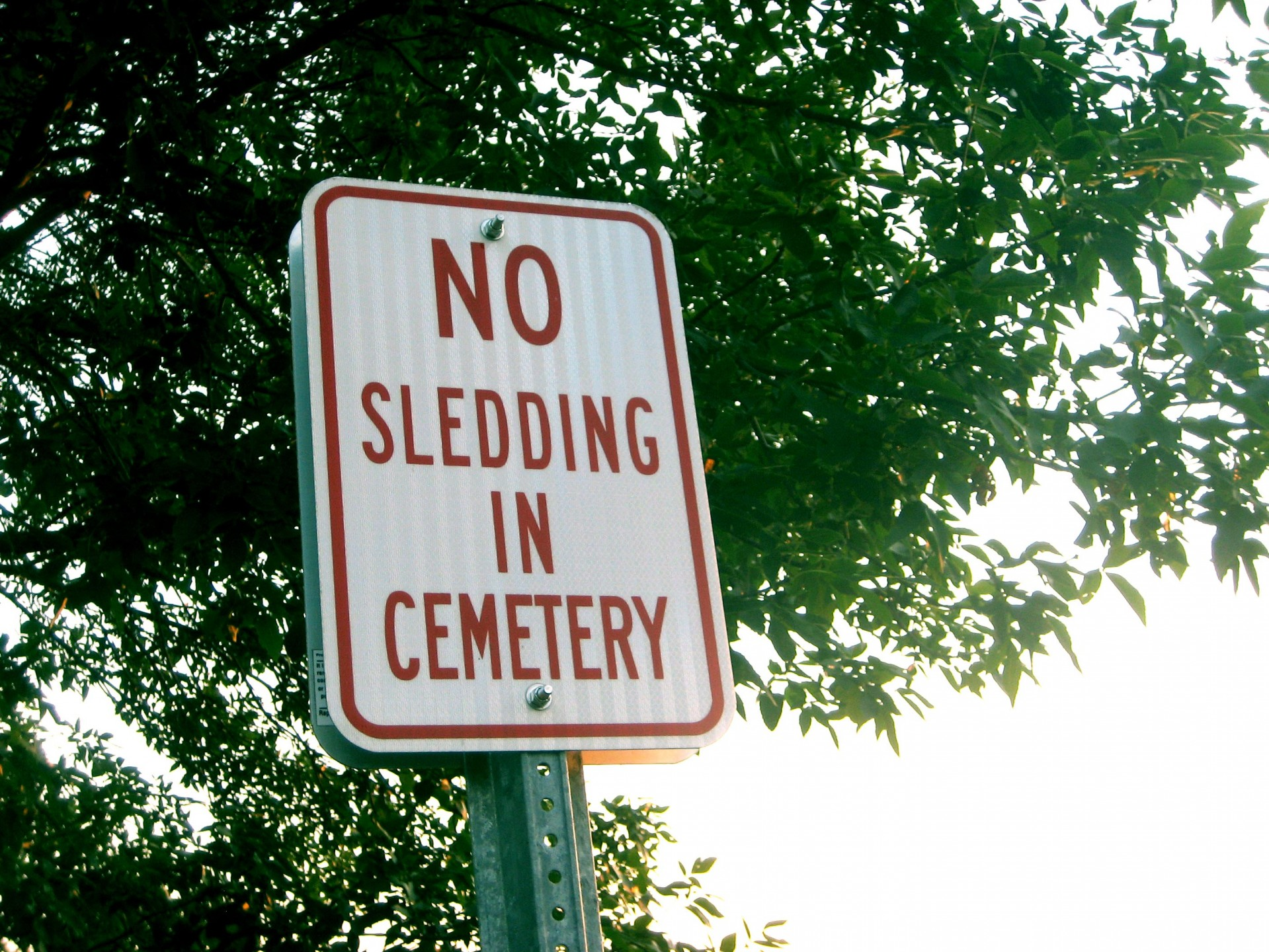 Funny signs, sledding, cemetery