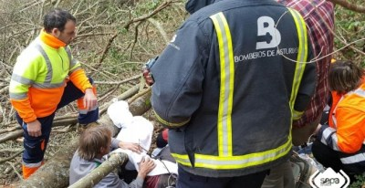 Bomberos de Asturias durante una de sus maniobras de ayuda. / SEPA Asturias - EP
