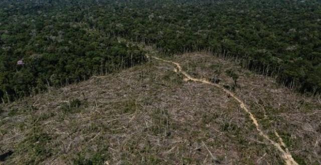 Zona deforestada del Amazonas en Apui, el sur del estado de amazonas /REUTERS (Bruno Kelly)