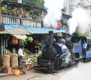DarjeelingToy Train