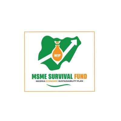 MSME SURVIVAL FUND- FLAG-OFF OF THE IMPLEMENTATION OF 75 BILLION NAIRA MSME SURVIVAL FUND AND GUARANTEED OFF-TAKE SCHEMES (GOS) FOR MSMEs | Public Procurement NG