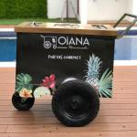 Oiana Homemade - Paletas gourmet 100% naturales - Paletas en Cancún
