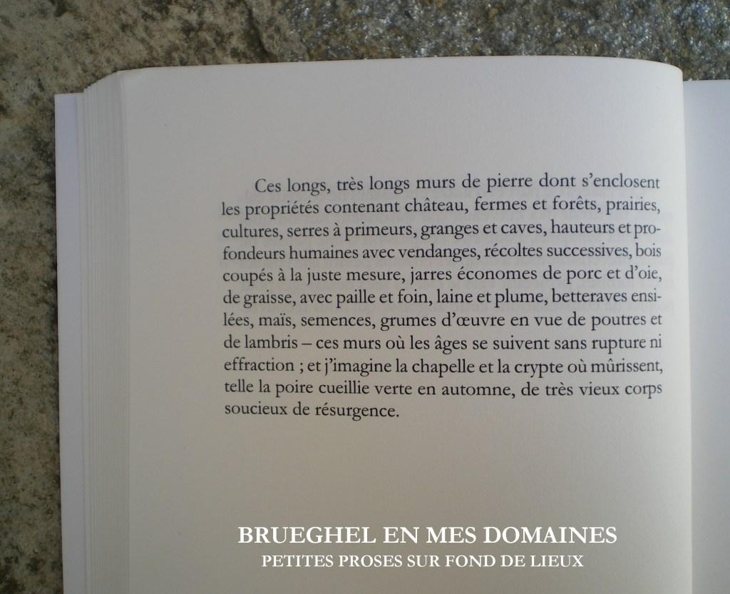 brueghel_page421