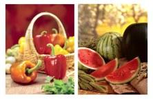 Frutas-Verduras