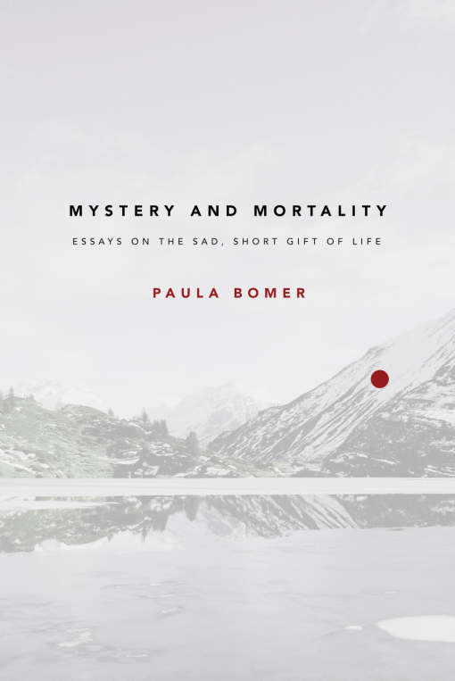 Bomer Mystery Cover