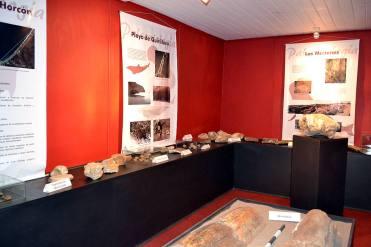 12_museo_puchuncavi