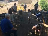 raking and clearing debris