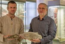Geschenke der besonderen Art: Nothosaurus-Schädel und Körperfossil für das Naturkundemuseum Erfurt