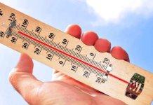 """Tipps zum Thema """"Sommerhitze"""""""