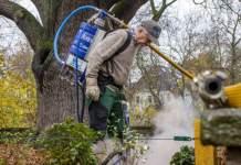 Mann mit Druckluftlanze an einem Baum im Park.