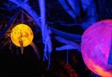 Illuminierte Objekte im Egapark