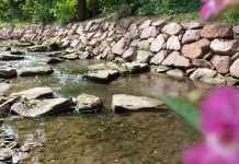 ein Bachlauf mit Natursteinmauer und Blumen im Vordergrund
