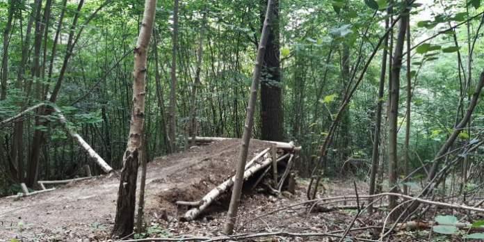 Eine Rampe in einem Wald