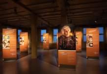 7 Ausstellungstafeln stehen im Raum, an den Wänden hängen weitere Tafeln.