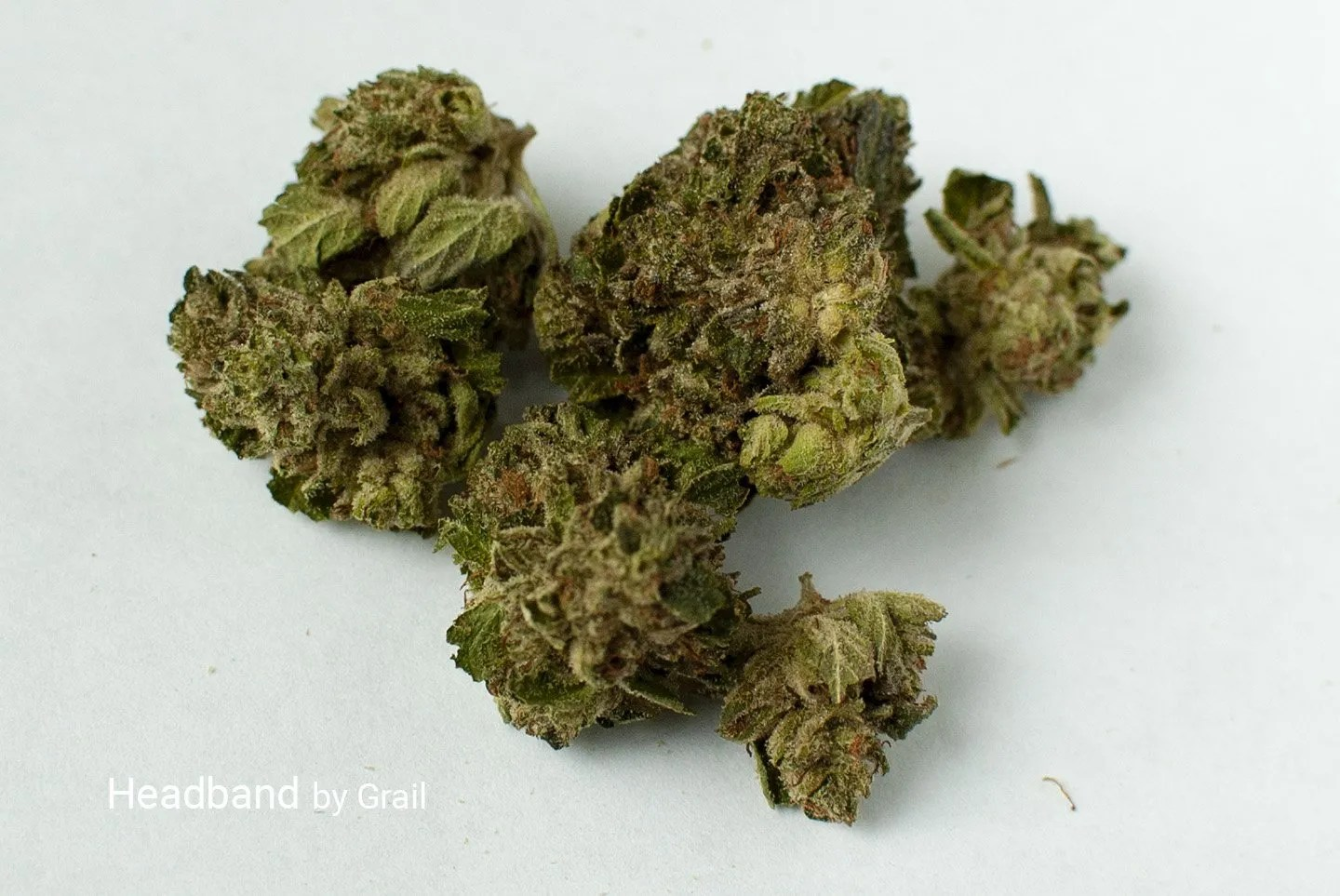 Sativa strain of headband
