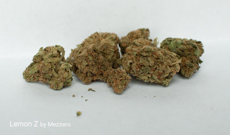 18.14% THC Lemon Z by Mezzerro