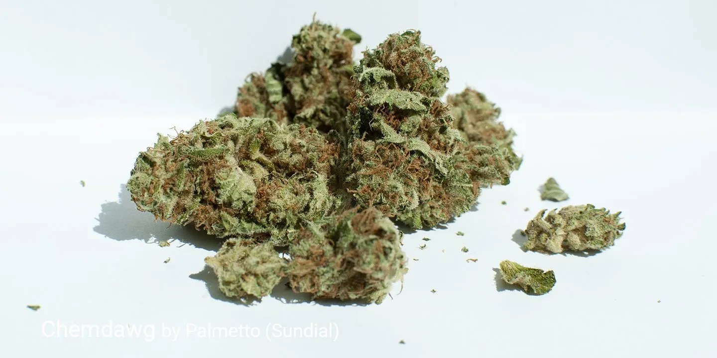 17.8% THC Chemdawg by Palmetto