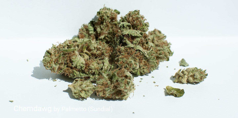 17.8% THC Chemdawg by Palmetto