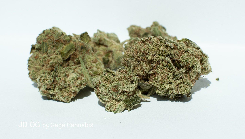 19.78% THC JD OG by Gage Cannabis