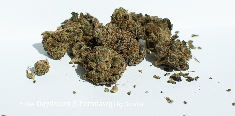 20.4% THC Flow Daydream (Chemdawg) by Sundial