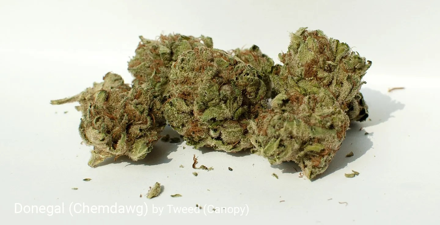 21.0% THC Donegal by Tweed