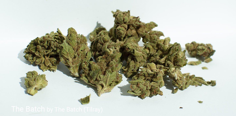 14.6% THC The Batch by The Batch (Tilray)