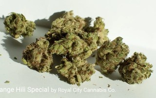 18.47% THC RC Orange Hill Special by Royal City Cannabis