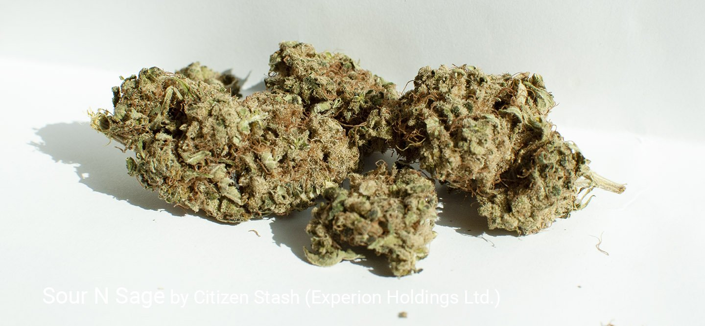 24.49% THC Sour N Sage by Citizen Stash