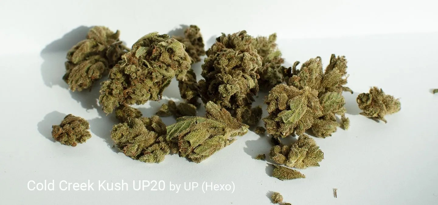 23.89% THC Cold Creek Kush UP20 by UP