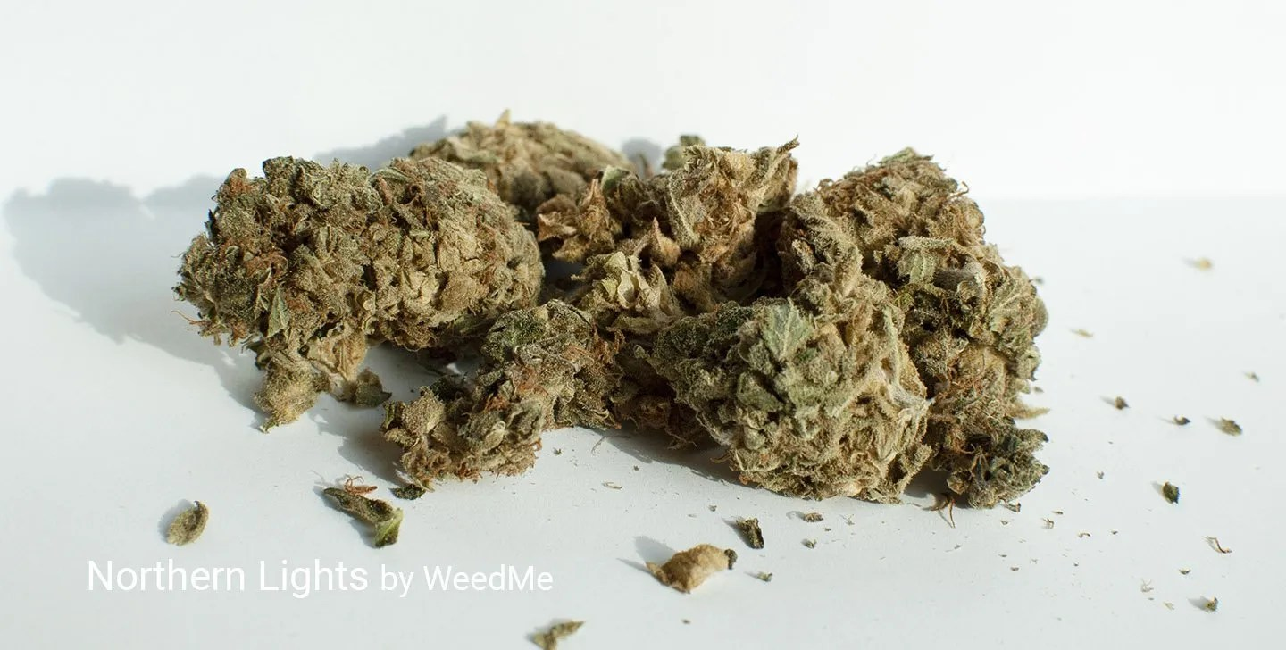 14.0% THC Northern Lights by WeedMe