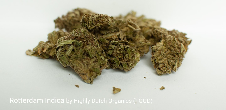 18.723% THC Rotterdam Indica by Highly Dutch Organic (TGOD)