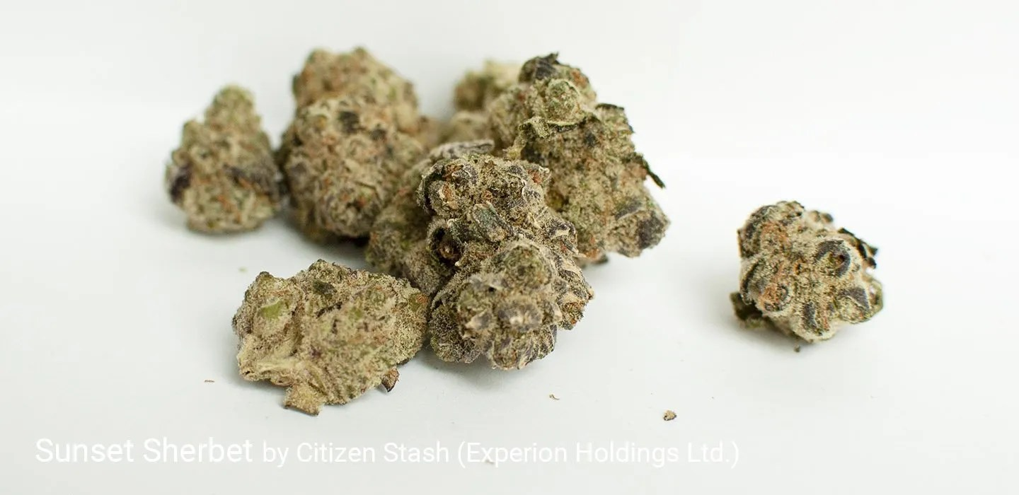 25.5% THC Sunset Sherbet by Citizen Stash