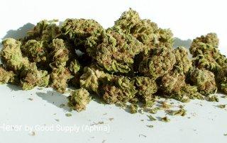 17.07% THC Jack Herer by Good Supply