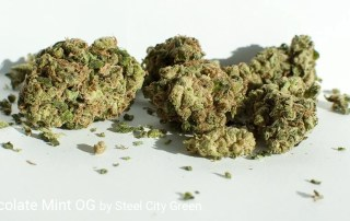 21.88% THC Chocolate Mint OG by Steel City Green