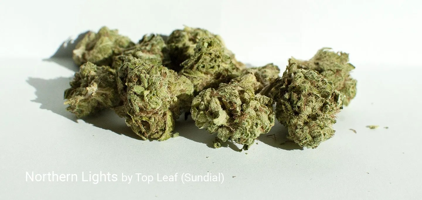 25.0% THC Northern Lights by Top Leaf