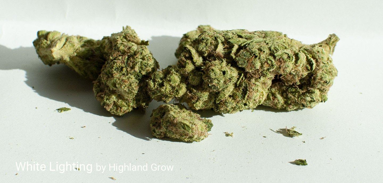 27.3% THC White Lighting by Highland Grow