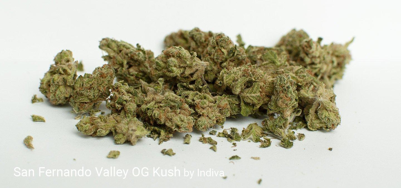 24.73% THC 3.6% Terpenes San Fernando Valley OG Kush by Indiva