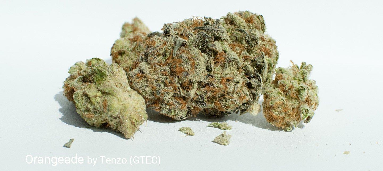 22.2% THC 2.2% Terpenes Orangeade by Tenzo